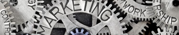 Strategic Marketing Team Building Creative Direction Direct Marketing Campaign Management Brand Management Tactical Execution Public & Media Relations Digital Marketing & E-com Social Media Strategy KPI Analysis P&L Management